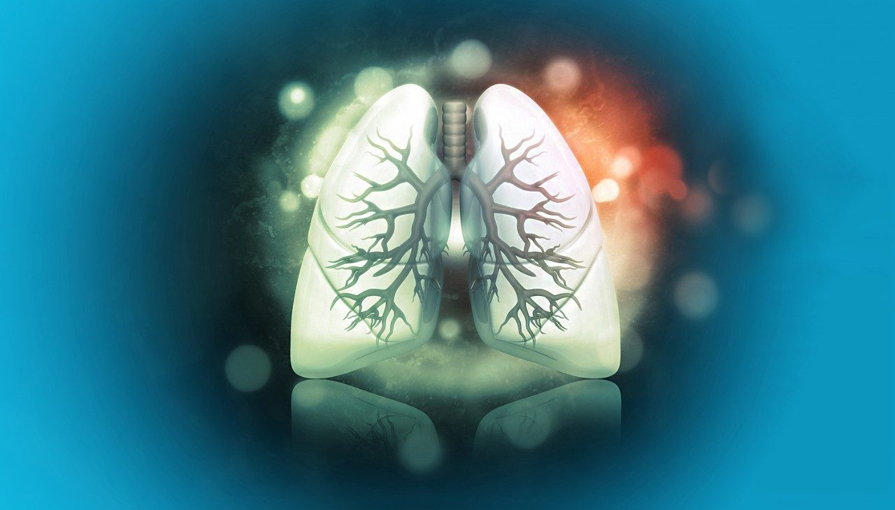 Image of lung on blue background