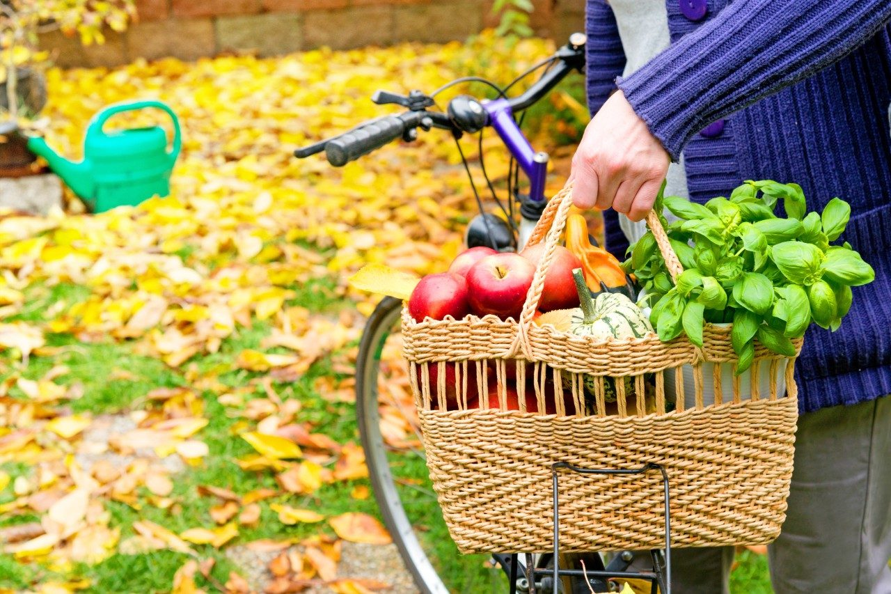 woman with bike and produce getting physical activity