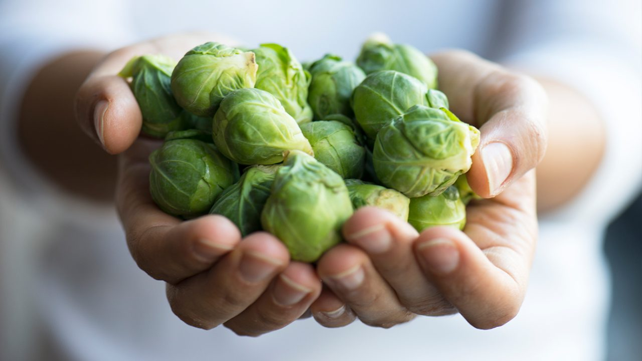 Person holds Brussels sprouts in their hand