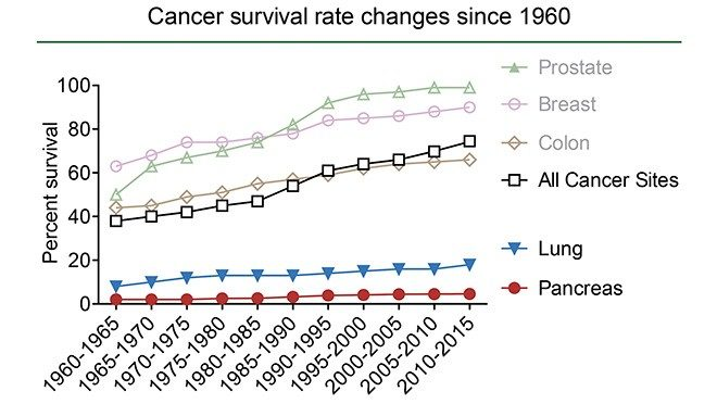 Line graph depicting cancer surival rate trends between 1960 and 2015. Lung and pancreatic cancer survival trends show the least improvement.
