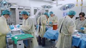 Thoracic Surgery Fellowship Program | MD Anderson Cancer Center