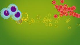 Stem Cell Transplants | MD Anderson Cancer Center