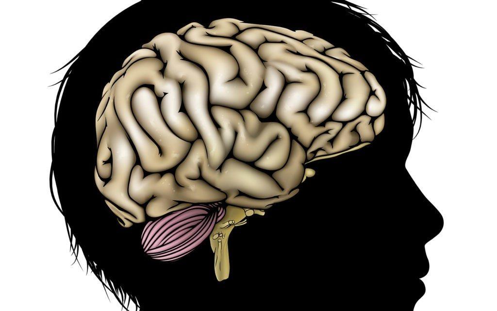 Brain tumor change sexuality
