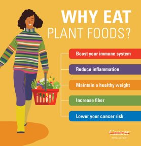 Infographic: Why eat plant foods. Summarizes sub-headings of the article.